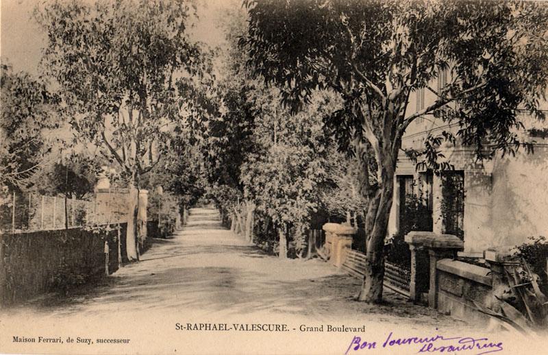 Boulevard des Mimosas